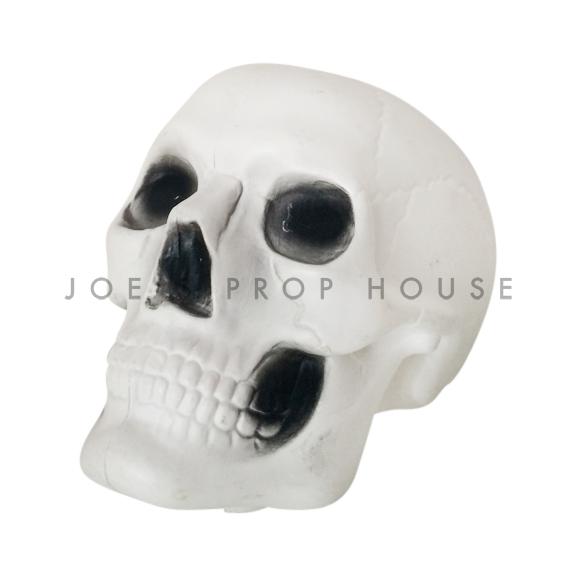 White Plastic Skull