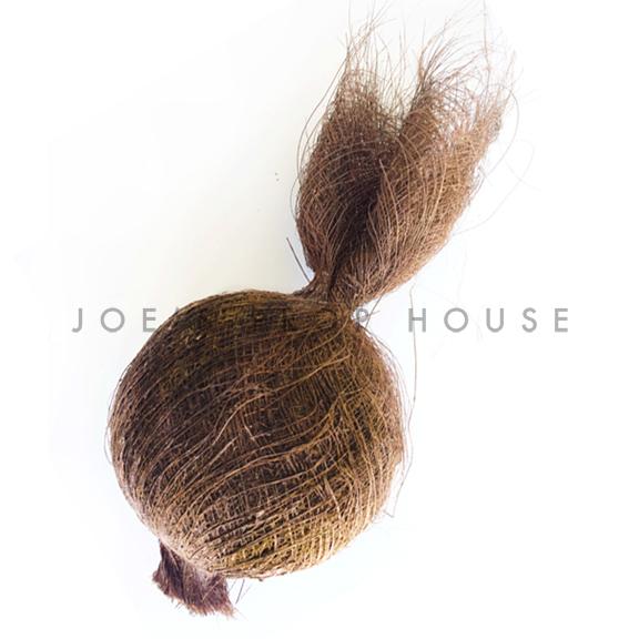 Artificial Coconut
