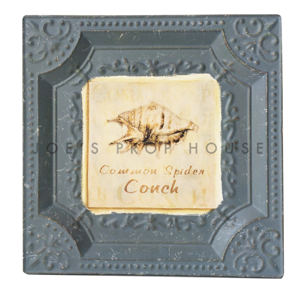 Common Spider Conch Metal Wall Art