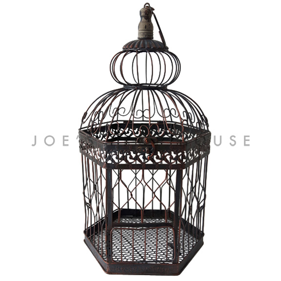 Georgina Cage de Oiseaux Brun