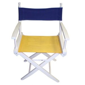 Multi Director Chair with White Frame