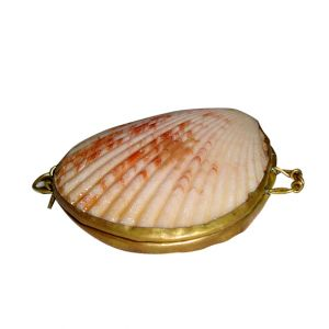 Shell Coin Purse
