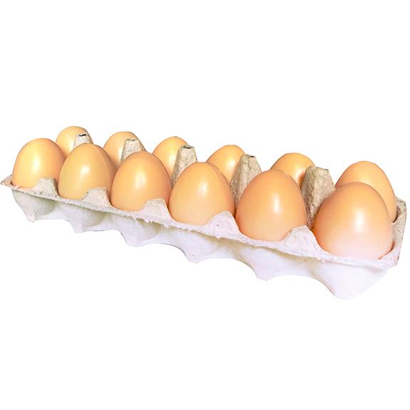 Dozen Artificial Brown Egg Open Carton