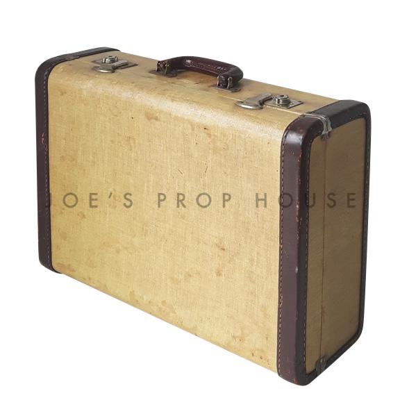 Ashford Hardshell Suitcase w/DARK BROWN Trim SMALL