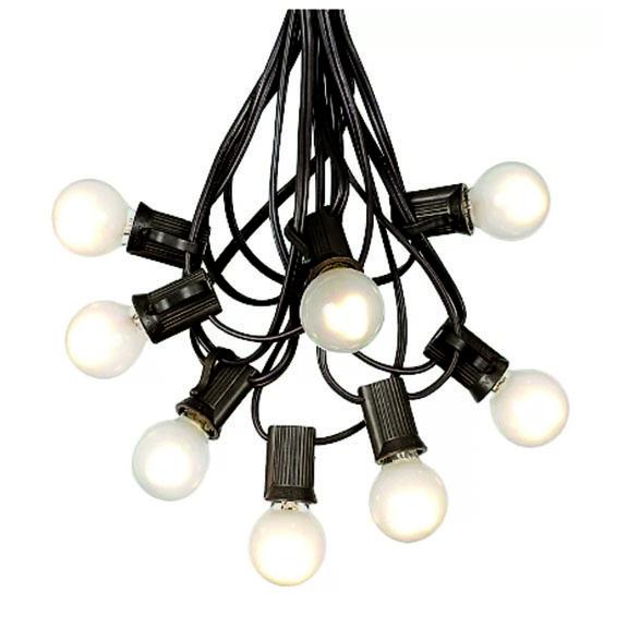 25ft White Frosted Bulb Black String Lights